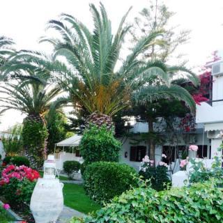 Margaritas House 2*