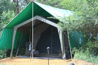 Mahoora Tented Safari Camp - Sinharaja