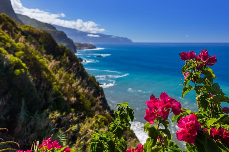 Madeira, Vila Baleira 4* - čarter iz Ljubljane