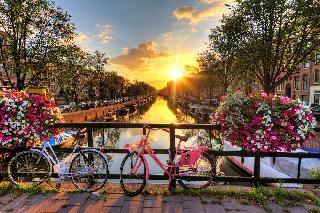 Nizozemska v znamenju cvetja