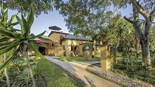 Gecko Lodge