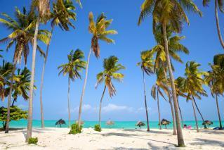 Hotel AMAAN BEACH BUNGALOW 3*, std 1/2 morska stran, NZ,  Zanzibar 10 dni -  let iz Ljubljane