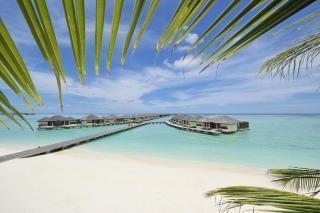 RAJSKE POČITNICE NA MALDIVIH - PARADISE ISLAND RESORT & SPA 4* - BEACH VILLA -10DNI