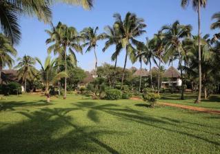 Hotel BLUEBAY BEACH RESORT & SPA 5* SUP 1/2+1, POL -  Zanzibar -  čarter iz Ljubljane