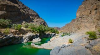 Aktivni Oman