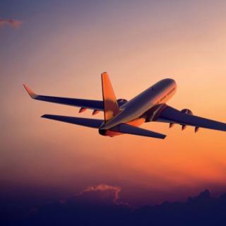 Letalski prevoz Črna gora