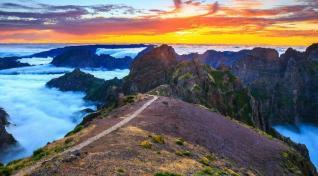 A(tra)ktivna Madeira