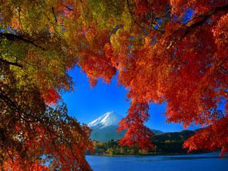 Doživeta Japonska