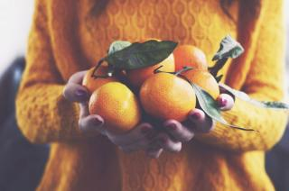 Trgatev mandarin ter jesensko druženje